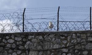 Αυτόπτης μάρτυρας είδε ποιος μαχαίρωσε τον Ιωάννη Σκαφτούρο στον Κορυδαλλό