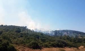 Μεγάλη φωτιά ΤΩΡΑ στην Αταλάντη (vid)