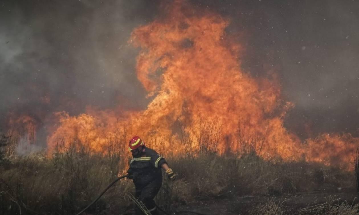 Φωτιά ΤΩΡΑ στο Άγιον Όρος