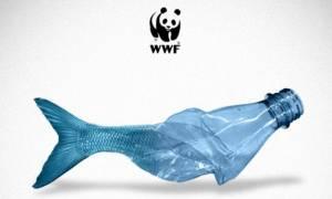 WWF: Η Μεσόγειος κινδυνεύει να μετατραπεί σε μια «πλαστική θάλασσα»