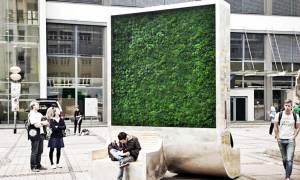 «Πράσινοι» τοίχοι στις πόλεις καθαρίζουν τον αέρα όπως 275 δέντρα (video)