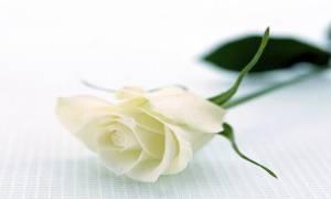 Θρήνος στον Πύργο: Πέθανε ο Αντώνης Βαγγόπουλος