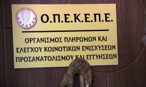 ΟΠΕΚΕΠΕ: Πότε λήγει η παράταση υποβολής των Ενιαίων Αιτήσεων Ενίσχυσης
