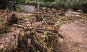Καιρός: Καταιγίδες και χαλάζι προκάλεσαν προβλήματα στο Μεσολόγγι (pics&vid)