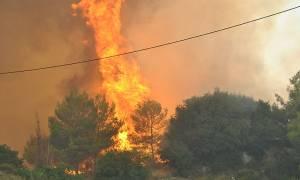 Σε ύφεση οι φωτιές σε Νέα Μάκρη και Κερατέα
