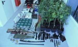 Αχαρνές: Εντοπίστηκε εργαστήριο υδροπονικής κάνναβης σε σπίτι - Συνελήφθη ένας 31χρονος (pics)