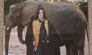 Ο ελέφαντας του Μάικλ Τζάκσον το 'σκασε! (video)