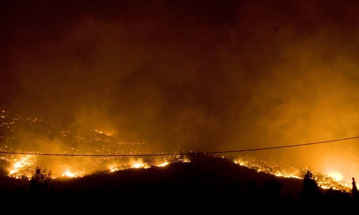 Κύπρος: Φωτιά ΤΩΡΑ στο κρατικό δάσος της Πάφου