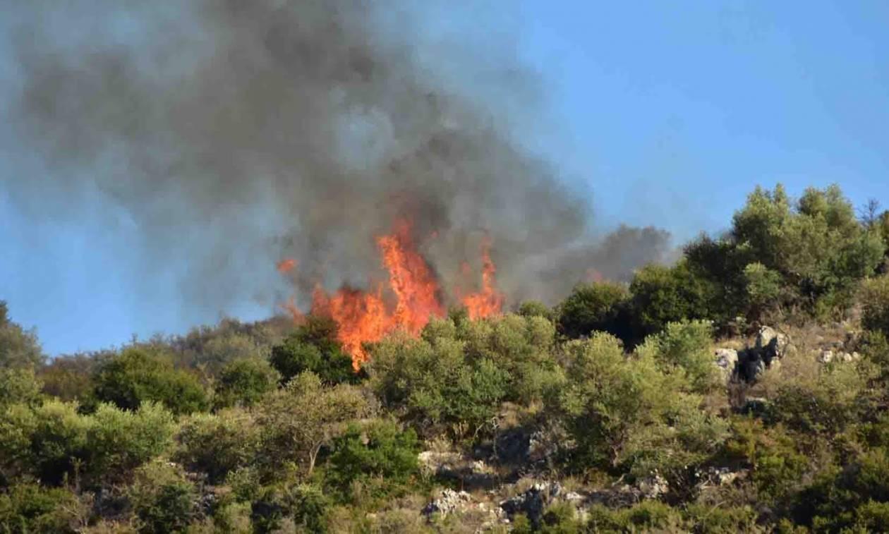 Σε εξέλιξη η φωτιά στο Άργος