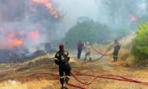 Φωτιά ΤΩΡΑ σε δασική έκταση στην περιοχή Βατήσι Καρύστου