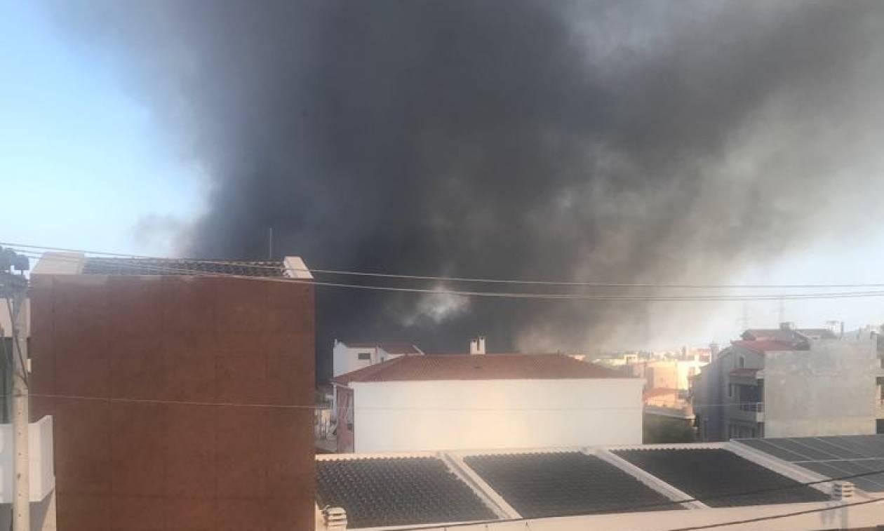 Φωτιά στο Γέρακα: Απείλησαν σπίτια οι φλόγες - Συναγερμός στην Πυροσβεστική (pics)