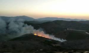 Υπό μερικό έλεγχο η φωτιά στη Σπίνα Χανίων (pics&vid)
