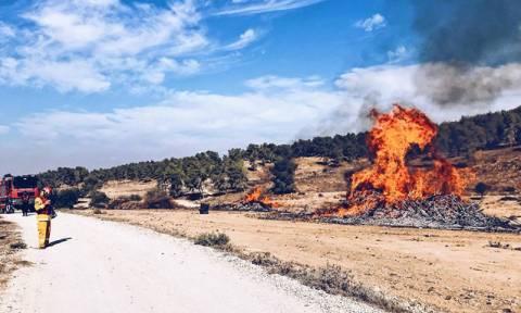 На Кипре за преднамеренный поджог будут сажать в тюрьму на 20 лет