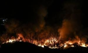 Φωτιά ΤΩΡΑ στη Μονεμβασιά Λακωνίας