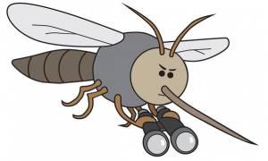 Έξι φυσικοί τρόποι για να κρατήσετε μακριά τα κουνούπια