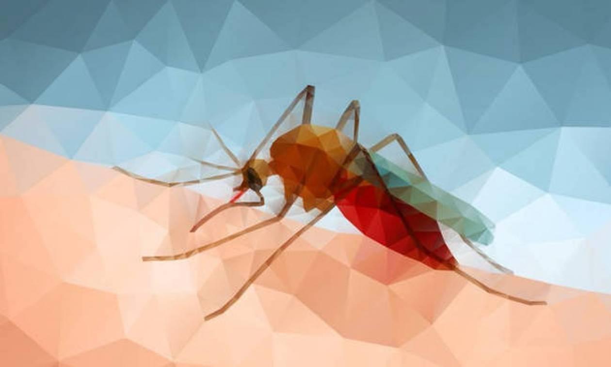 Απίστευτο! Δείτε το «απόλυτο» κόλπο που σκέφτηκαν οι Κινέζοι για να μην τους τσιμπάνε τα κουνούπια