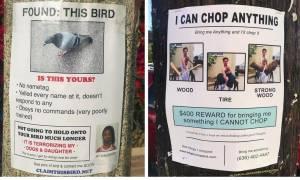 Δυο τύποι γεμίζουν τη γειτονιά τους με αγγελίες-παρωδίες και σκορπούν το γέλιο! (pics)