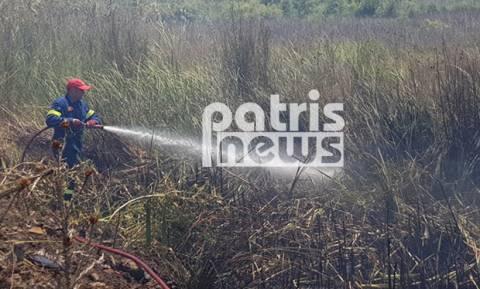 Πύργος: Μεγάλη φωτιά απείλησε σπίτια στη Σπιάντζα (photos)