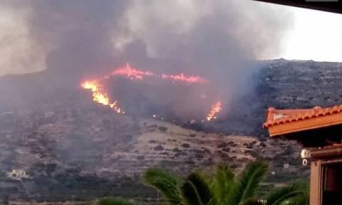 Συναγερμός στην Κρήτη: Μεγάλες πυρκαγιές στα Φαλάσαρνα και στο Αρολίθι