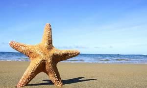 Κοινωνικός τουρισμός ΟΑΕΔ 2018: Όλα τα βήματα που θα πρέπει να κάνουν οι δικαιούχοι