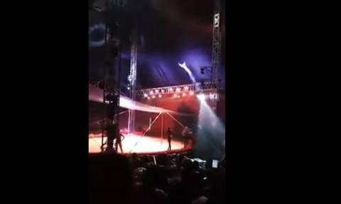 Βίντεο που κόβει την ανάσα: Τρομακτικό ατύχημα σε τσίρκο