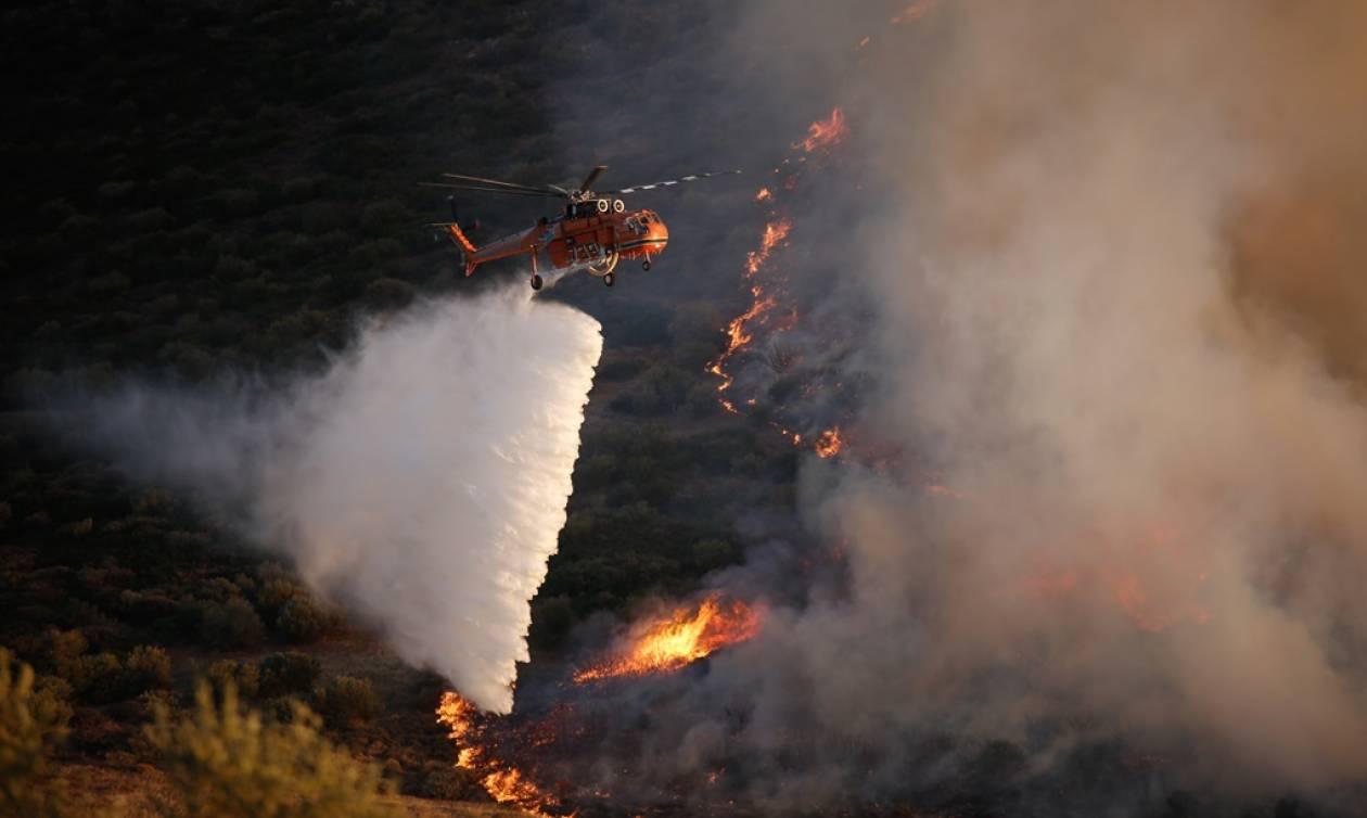Φωτιά ΤΩΡΑ: Μεγάλη πυρκαγιά στην Κινέτα - Στις φλόγες τα Γεράνεια Όρη (pics)
