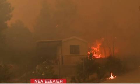 Φωτιά ΤΩΡΑ στην Κινέτα: Στις αυλές των σπιτιών έφτασαν οι φλόγες (vid)