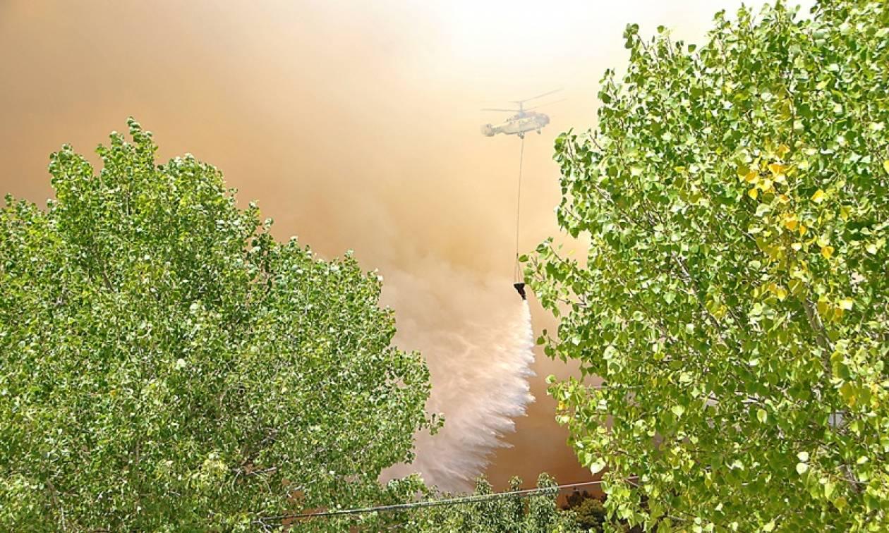 Χανιά: Φωτιά ΤΩΡΑ στην περιοχή Μετόχι