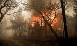 Φωτιά Κινέτα: Συναγερμός στις Ένοπλες Δυνάμεις - Έτοιμες να επέμβουν