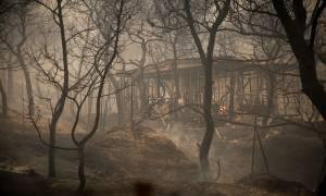 Φωτιά Κινέτα: Πληροφορίες ότι αγνοείται κτηνοτρόφος