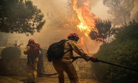 Πύρινη κόλαση στην Κινέτα: Οι φλόγες κατακαίουν τα πάντα στο διάβα τους – Συγκλονιστικές εικόνες