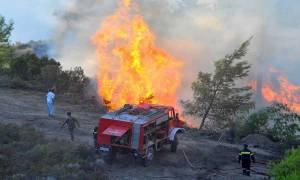 Φωτιά τώρα: Νέα πυρκαγιά στην περιοχή Κατακάλι στην Κόρινθο