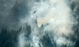 Στις «φλόγες» η Βόρεια Ευρώπη: Καίγονται αρχαία δάση σε Φινλανδία, Σουηδία, Νορβηγία και Λετονία
