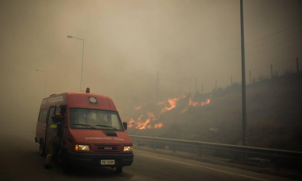 Φωτιά Κινέτα - ΤΩΡΑ: Πύρινη κόλαση στη Δυτική Αττική - Ολονύχτια η μάχη με τις φλόγες (pics)