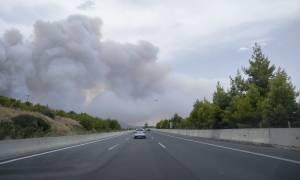Φωτιά Κινέτα: Άνοιξε η Εθνική Οδός Αθηνών-Κορίνθου και στα δύο ρεύματα κυκλοφορίας