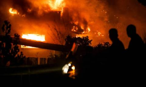 По меньшей мере 24 человека погибли в результате лесных пожаров в Греции