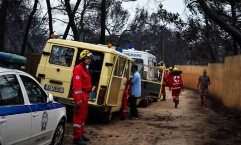 В Греции в результате пожаров погибли 49 человек