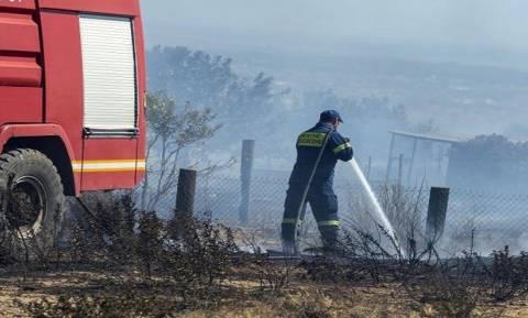 На Кипре введен «красный» уровень пожарной опасности
