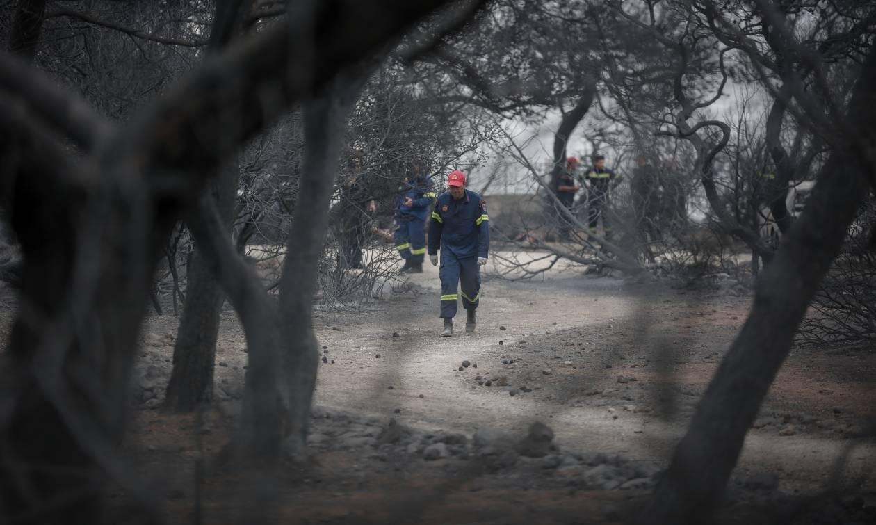 Φωτιά: Απανθρακωμένοι μητέρα και παιδί στο Μάτι - Δήμαρχος Ραφήνας: «Οι νεκροί είναι τουλάχιστον 60»