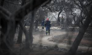 Φωτιά Αττική: Αποκαθίσταται σταδιακά η ηλεκτροδότηση στις πληγείσες περιοχές
