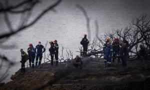 Φωτιά ΤΩΡΑ - Πυροσβεστική: 74 οι νεκροί από τις φονικές πυρκαγιές στην Αττική