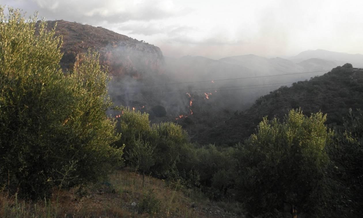 Φωτιά Χανιά: Σε τρία μέτωπα μαίνεται η πυρκαγιά στον Κακόπετρο (pics)