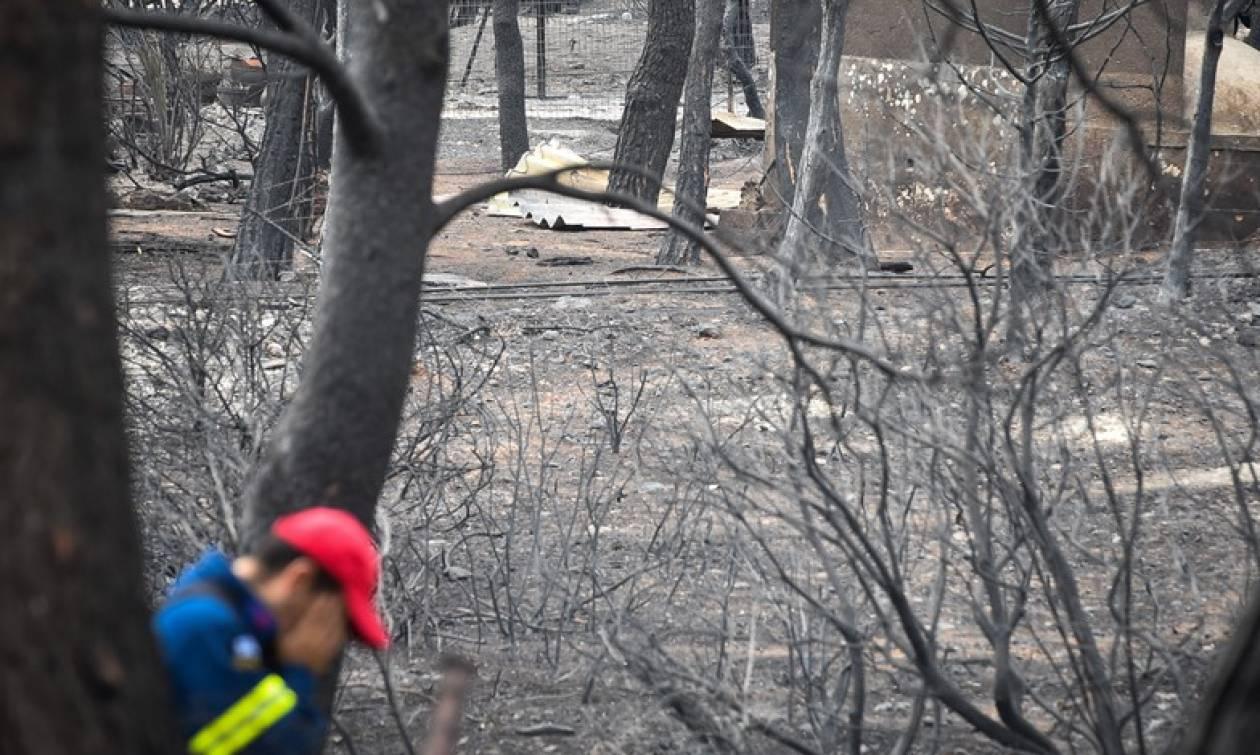 Φωτιά τώρα – Ανατριχιαστική μαρτυρία: «Είδα ένα κορίτσι να καίγεται και να πηδάει από τον γκρεμό»