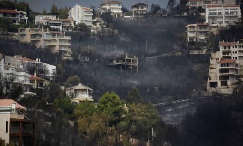 Число жертв пожара в Греции достигло 81 человека