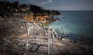 Φωτιά - Πυροσβεστική: Στους 81 οι νεκροί από τις φονικές πυρκαγιές