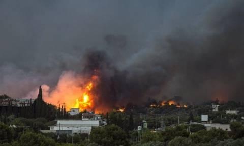 Кипр выделил 10 млн евро на оказание помощи пострадавшим в результате пожара в Греции