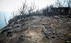 Αποκάλυψη – σοκ για το οικόπεδο του θανάτου: «Υπήρχε πρόσβαση στην παραλία, αλλά δεν την είδαν»