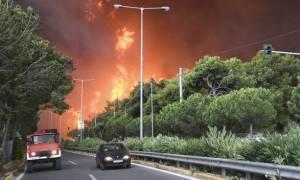 Δήμαρχος Πεντέλης: Η φωτιά ξεκίνησε από ένα κομμένο καλώδιο της ΔΕΗ
