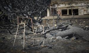 Φωτιά Μάτι: Κουλουριάστηκε και περίμενε το θάνατο στο οικόπεδο της φρίκης