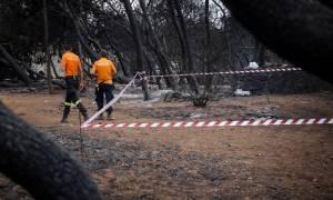 Φωτιά Μάτι: 87 οι νεκροί από τις φονικές πυρκαγιές - Ολοκληρώθηκαν οι νεκροτομές